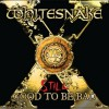 Whitesnake 'Still...Good To Be Bad' (Warner Music Japan 2011)
