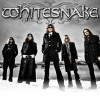 Whitesnake UK Tour Advert (2011)